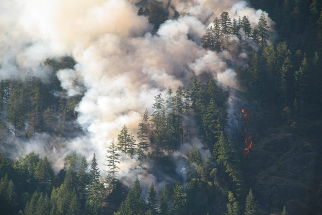 Read more on BC Wildfires: How GNB Is Participating in the Fight
