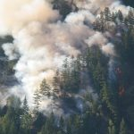 BC Wildfires: How GNB Is Participating in the Fight
